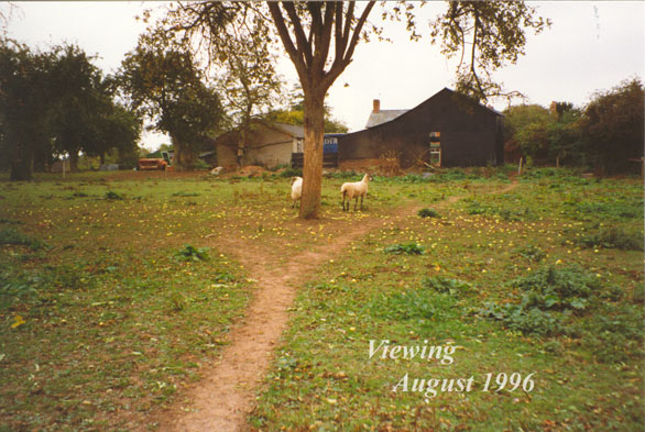The garden to be in 1996